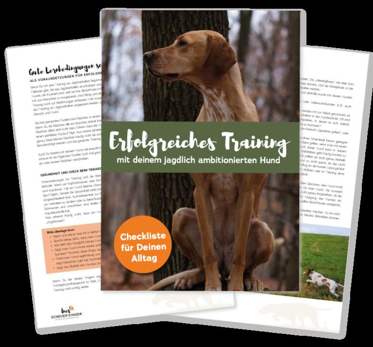 Ines-Scheuer-Dinger-Coaching-Jagdhunde-Erfolgreiches-Training-mit-jagdlich-ambitionierten-Hund
